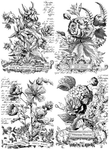 IOD Paintable Transfers 'Classic Bouquets' Transferfolie Rosen PAI-TRA-CLA